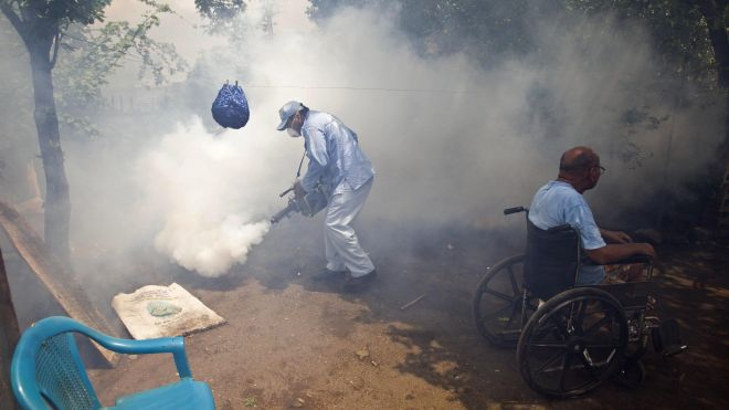 Dengue Epidemic CA_AP_Aug 12 2013
