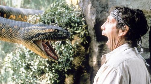 An Anaconda in Guanacaste? Not Quite! – Q COSTA RICA