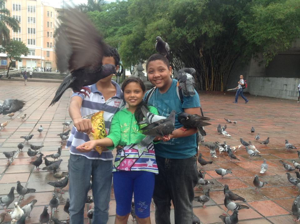 cali-plaza-birds