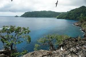 coco-s-island
