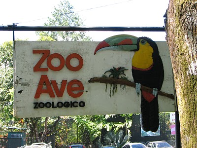 zoo-ave-086
