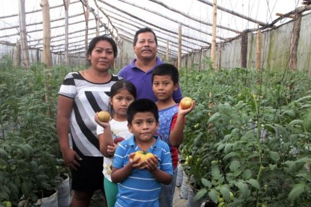 Agronomist Francisco Ramírez, a member of the Cuscatlán vegetable producers' cooperative, and his family, in one of the greenhouses where they grow tomatoes. Credit: Tomás Andréu/IPS