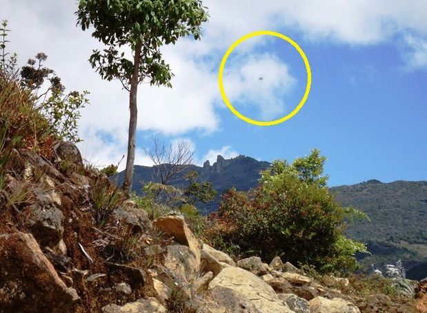 Photo by Alejandro Sáenz taken in February 2014 of a UFO flying over the Chirripó, Costa Rica's highest peak.