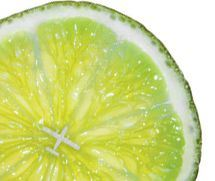 nature-air-limon