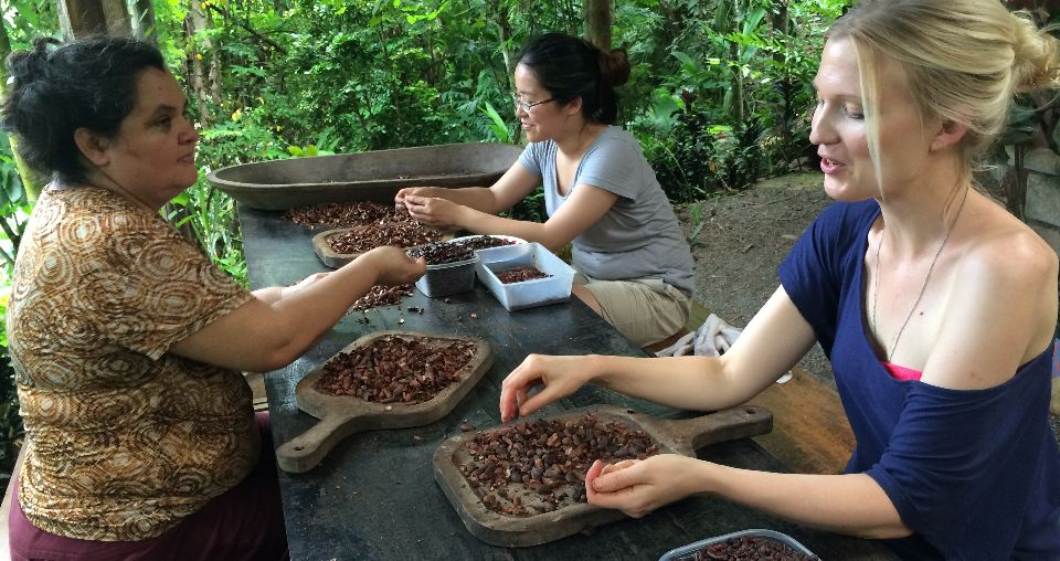 shucking-cocoa-,mastatal-puriscal