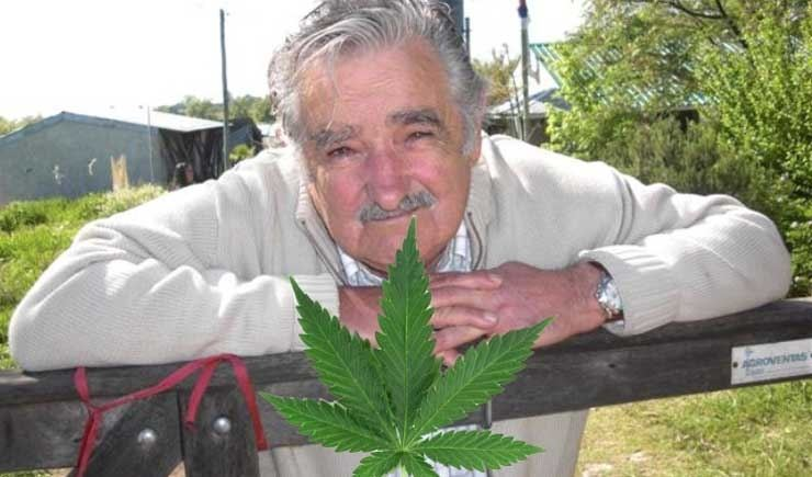 "José Alberto ""Pepe"" Mujica Cordano is a Uruguayan politician who has been President of Uruguay since 2010."
