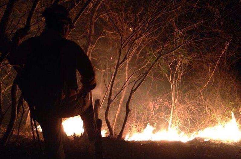 Incendio-Parque-Nacional-Diria_