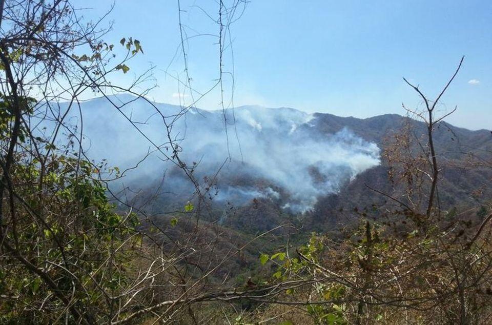 Incendio-Parque-Nacional-Diria_3