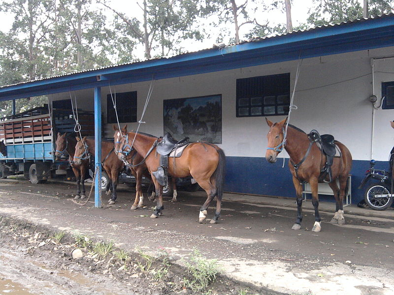 """The stables or """"Base Montada"""" is located on the east side of the National Stadium, in La Sabana park"""