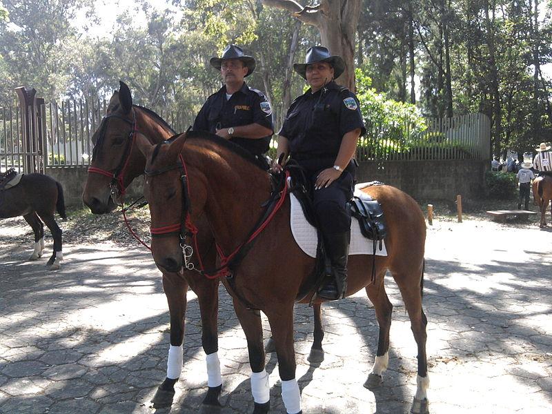 Mounted police on regular patrol