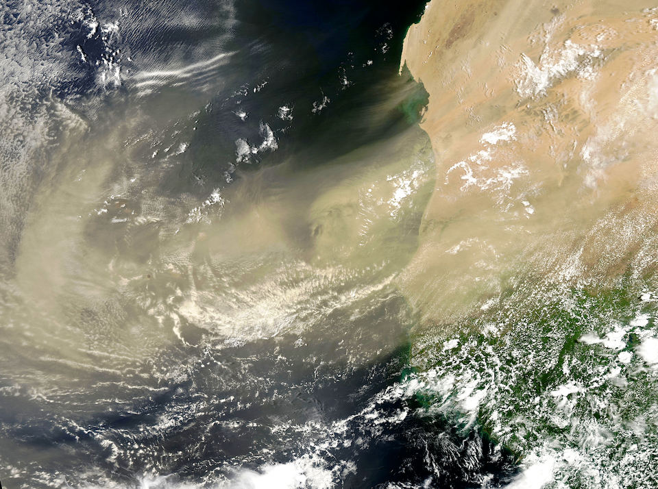 Saharan dust spreading out over the Atlantic. (Image: NASA)
