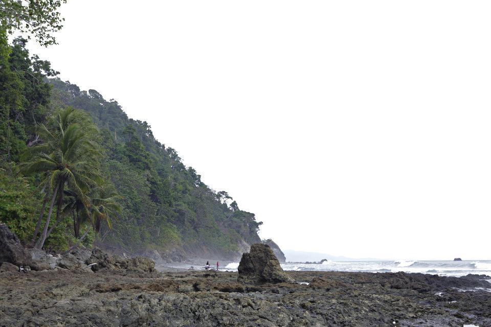 Osa-Peninsula-Costa-Rica-Beach-JoeBaur