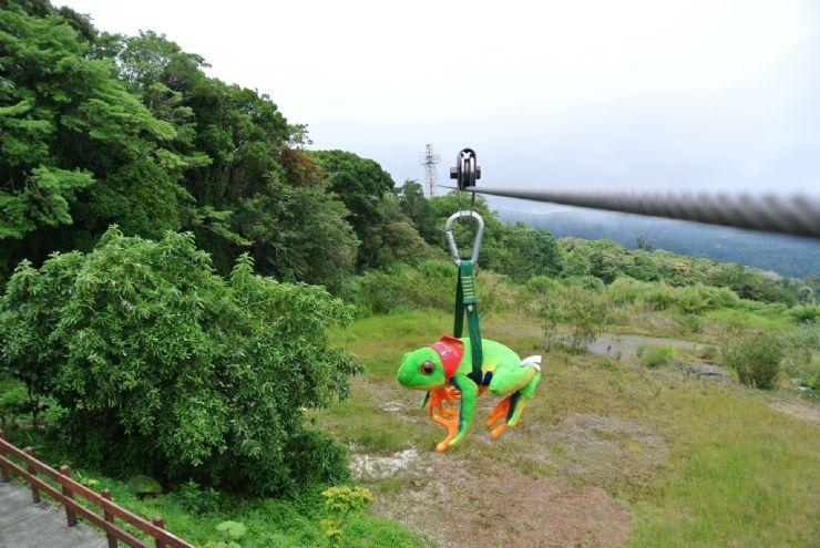 Javi the Frog doing canopy at Monteverde