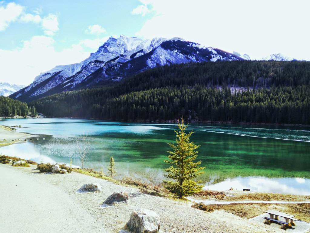Bottling Locations - Banff National Park. This picture here was taken only about 2 kilometers away. Tens of thousands of trees in the background, the sun is blazing and the fresh clean water flows ... from Vitalityair.com