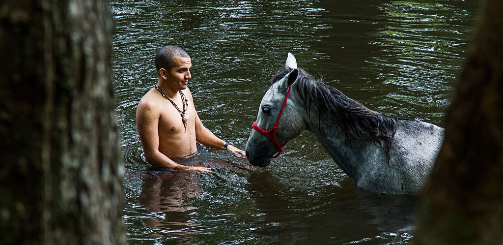 To swim with the horse, I had to position my body horizontally over the horse's back and hold on only to its mane.