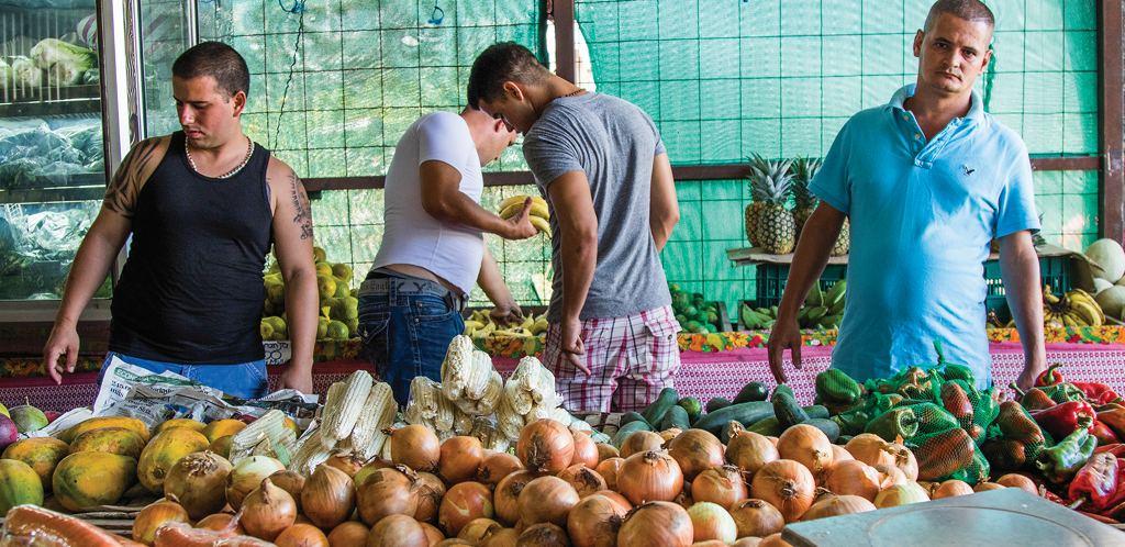 cubanos_verduras