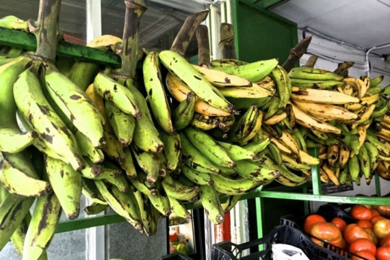 Not to be sniffed at, these green and yellow plantains at Carniceria Mimi in Canas, Costa Rica. © 2015 David Latt - See more at: http://www.themalaymailonline.com/eat-drink/article/turn-plantains-into-patacones-for-an-easy-latin-treat#sthash.Sp5myL2T.dpuf