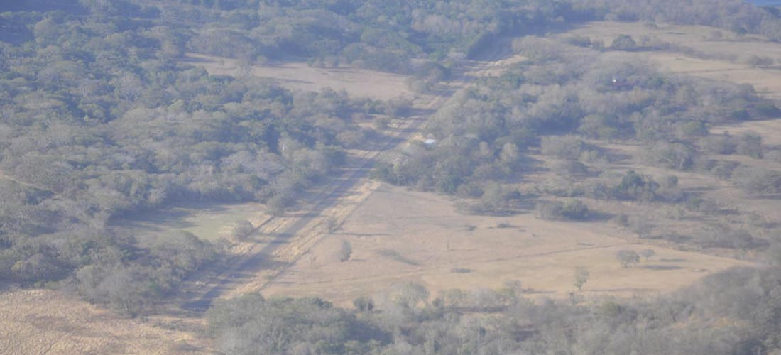 Some 33 clandestine airstrips have been identified along the Pacific coast, in the provinces of Guanacaste and Puntarenas, some even in national parks
