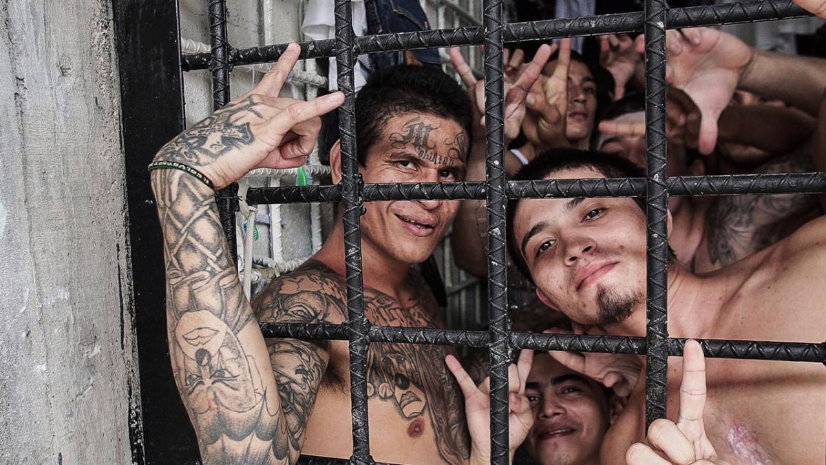 Mara Salvatrucha (MS-13) is an international criminal gang that originated in Los Angeles, California. It has spread to other parts of the United States, Canada, Mexico, and Central America.[4] The majority of the gang is ethnically composed of Central Americans (mostly Salvadorans) and active in urban and suburban areas.