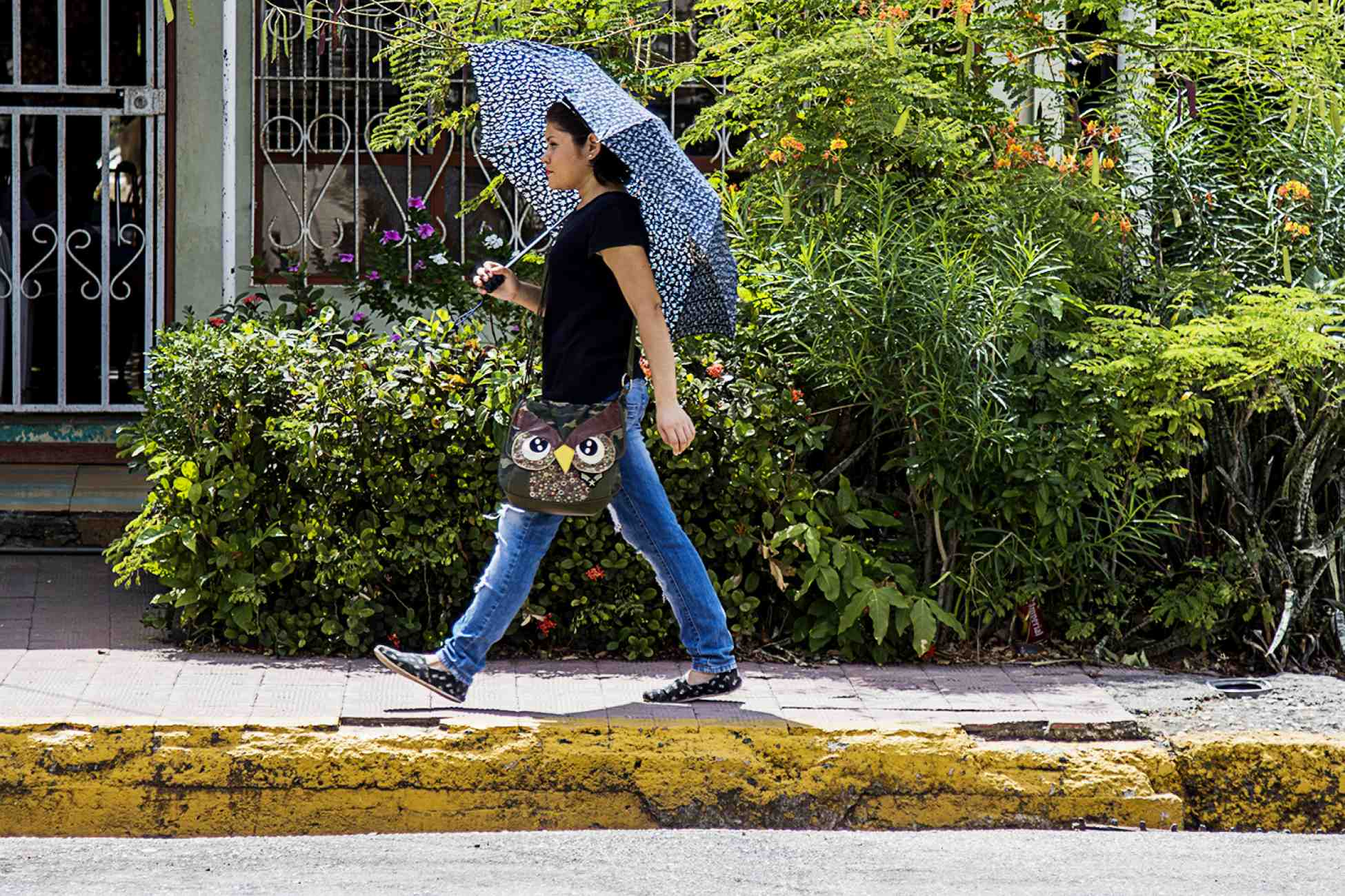 Although there are more than two months to go before it rains, it is common to see women walking with umbrellas to protect themselves from the sun's strong rays, a typical scene in the streets of Guanacaste. Photo Ariana Crespo