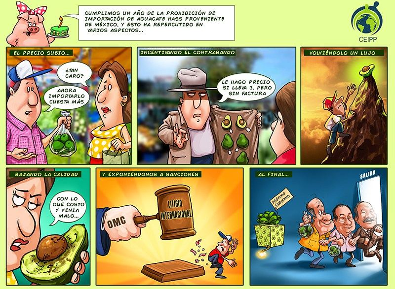 Aguacate_web-1