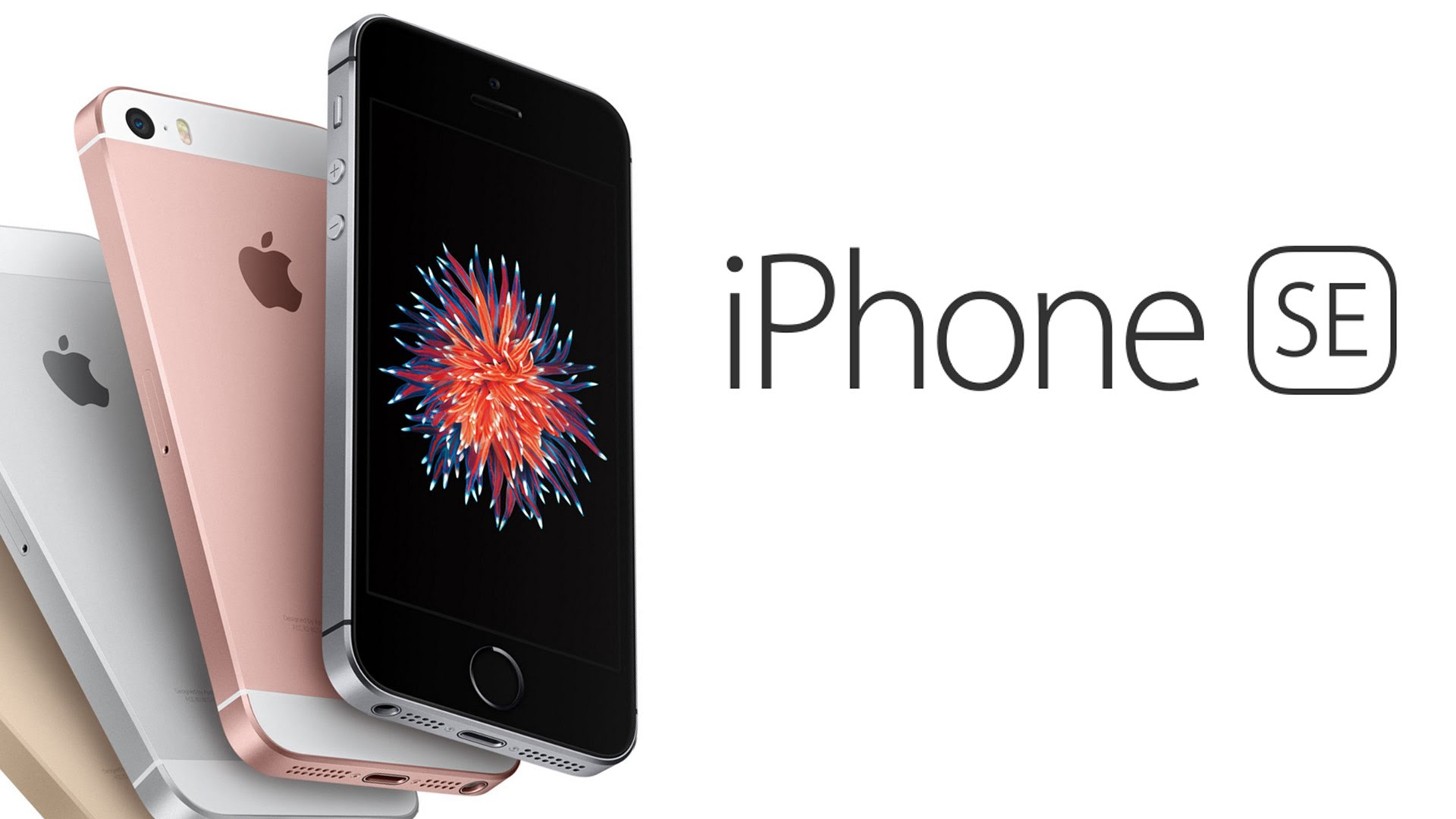 the iphone se now available in costa rica q costa rica