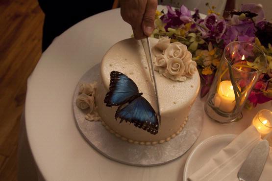 luxyry-wedding-cake