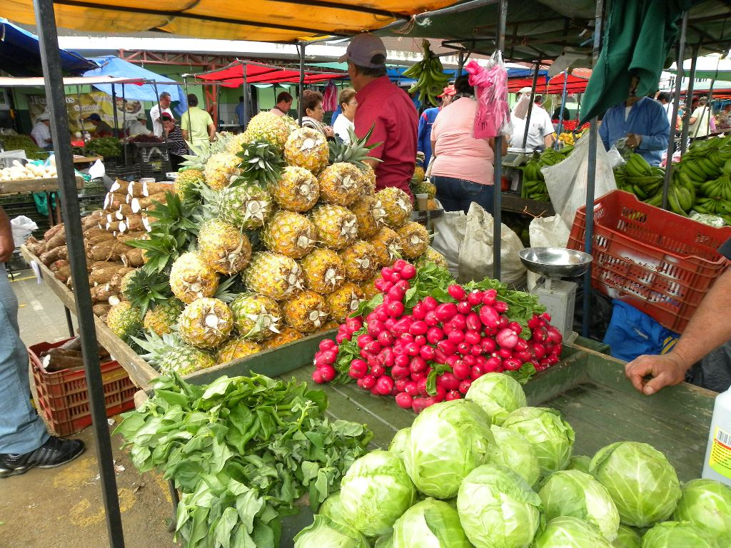 "The ""Feria del Agricultor"" (Fair of the Farmer) happening all over Costa Rica every weekend is great way to buy fresh fruits and vegetables and much cheaper than the local supermarkets."