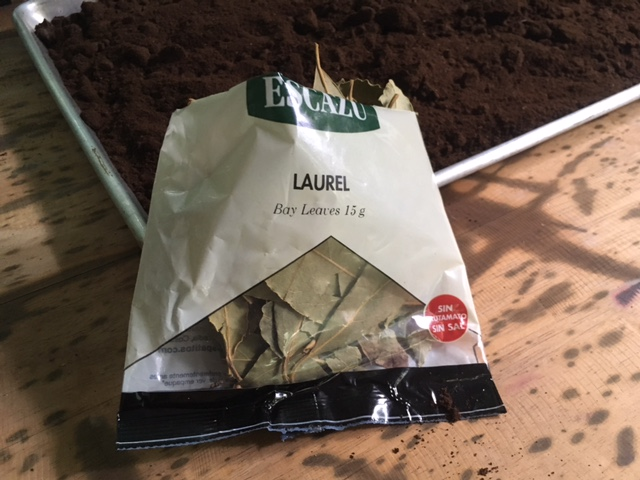 My opened packaged of bay leaves (laurel in Spanish), next to my coffee grinds I burn to repel flying pests and in the garden soil