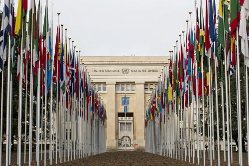 Flags of the 193 UN Member States outside the Palais des NationsCredit: UN Photo /