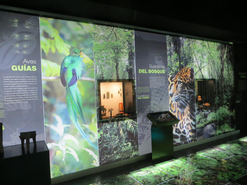 Visually stunning images on glass walls are one of the reasons the Jade Museum is being hailed as a world-class museum.