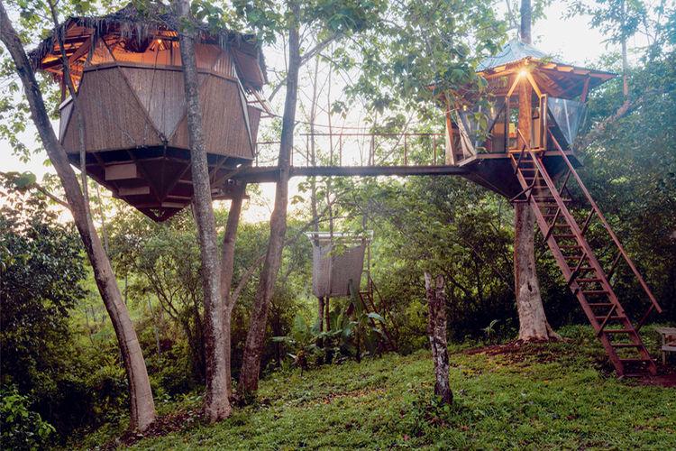 Sacred Geome Tree House Es Uno De Los Hospedajes Que Ofrece Airbnb En El País