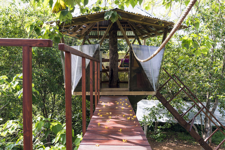 Offers on Airbnb in Costa Rica start as little as ¢5.600