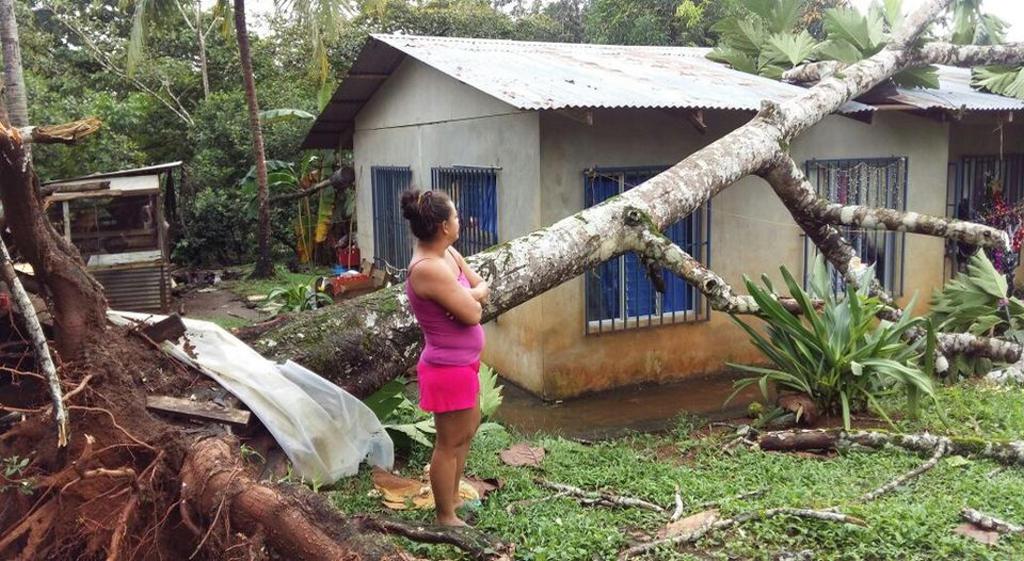 chiles-viviendas-vieron-afectadas-arboles_lncima20161125_0135_5